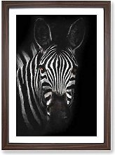 Big Box Art Zebra in The Shadows in Abstract