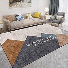 Big Rug Sofa Carpet For Hall The Gray-Brown Carpet