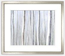 Birch Trees Framed Print & Mount, 82 x 97cm, Silver