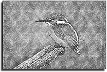 Bird Drawing on Tree Trunk