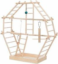 Bird Ladder Playground (44cm x 16cm x 44cm) -