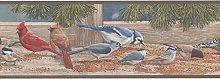 Birds Wallpaper Border KR2343B