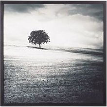 Black and White Landscape Canvas Print 100x100