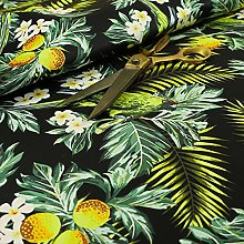 Black Jungle Life Birds Pattern Velour Velvet
