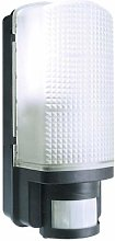Black Outdoor Bulkhead Security Wall Light IP44