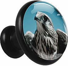 Black Round Cabinet Knobs Animal Owl Handles and