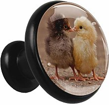 Black Round Cabinet Knobs Cute Chick Handles and