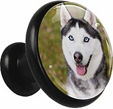 Black Round Cabinet Knobs Cute Dog Handles and