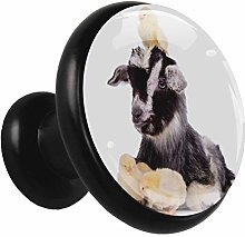 Black Round Cabinet Knobs Dog Chick Handles and
