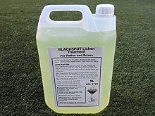 Black Spot Lichen Remover, Sandstone Cleaner,