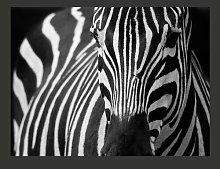 Black Striped White 1.54m x 200cm Wallpaper East