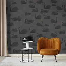 Black Swan Mural Wallpaper (SqM)