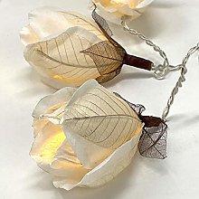 BLAZE ON Designer Chelsea Rose Fairy Lights (White