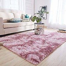 Blivener Ultra Soft Fluffy Thick Area Rug Indoor