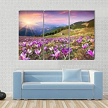 Blossom Of Crocuses 3 Piece Wall Art Framed