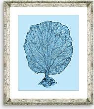 Blue Coral 1 - Framed Print & Mount, 46 x 36cm,