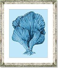 Blue Coral 3 - Framed Print & Mount, 46 x 36cm,