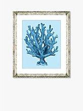 Blue Coral 4 - Framed Print & Mount, 46 x 36cm,