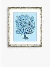 Blue Coral 5 - Framed Print & Mount, 46 x 36cm,
