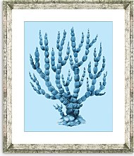 Blue Coral 6 - Framed Print & Mount, 46 x 36cm,