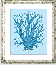 Blue Coral 8 - Framed Print & Mount, 46 x 36cm,