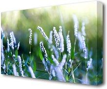 Blue Field Flowers Flowers Canvas Print Wall Art