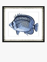 Blue Fish 2 - Framed Print & Mount, 36 x 46cm, Blue