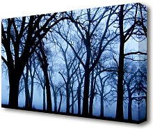 Blue Night Forest Forest Canvas Print Wall Art