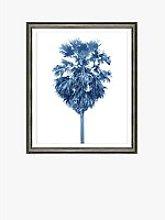 Blue Palm Tree 2 - Framed Print & Mount, 66 x
