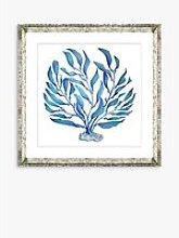 Blue Seaweed 2 - Framed Print & Mount, 46 x 46cm,