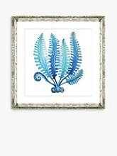 Blue Seaweed 3 - Framed Print & Mount, 46 x 46cm,