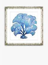 Blue Seaweed 5 - Framed Print & Mount, 46 x 46cm,