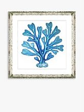 Blue Seaweed 6 - Framed Print & Mount, 46 x 46cm,