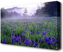 Bluebell Mist Forest Canvas Print Wall Art East