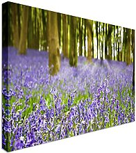 Bluebells in the woods UK 20x30 inches   Canvas