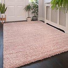 Blush Pink Modern Rug Living Room Extra Large