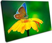 Bold Bloc Design Butterfly Flowers Floral 90x60cm