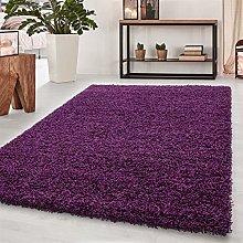 Bravich RugMasters Purple Lila Large Rug 5 cm