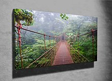 Bridge in Rainforest Photo Canvas Print (52704856)