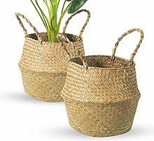 BrilliantJo Seagrass Belly Basket, Set of 2 Plant