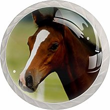 Brown Animal Horse 4 Pieces Crystal Glass Wardrobe