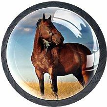 Brown Animal Horse Crystal Drawer Handles