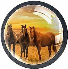 Brown Horse at Dusk Crystal Drawer Handles