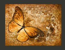 Butterfly Sepia 2.70m x 350cm Wallpaper East Urban