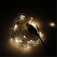 BUYERTIME 5M/16.4ft 50 LEDs String Lights, USB