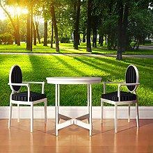 BYSQX Non-Woven Wallpaper Green Grass Sunshine