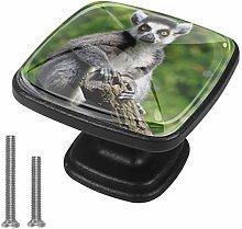 Cabinet Knob Animal Lemur Dresser Cupboard Drawer