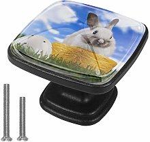 Cabinet Knob Rabbit Meadow Dresser Cupboard Drawer