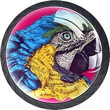Cabinet Knobs Dresser Drawer Knobs Color Parrot