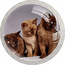 Cabinet Knobs Pulls Animal Cat Round Crystal Glass